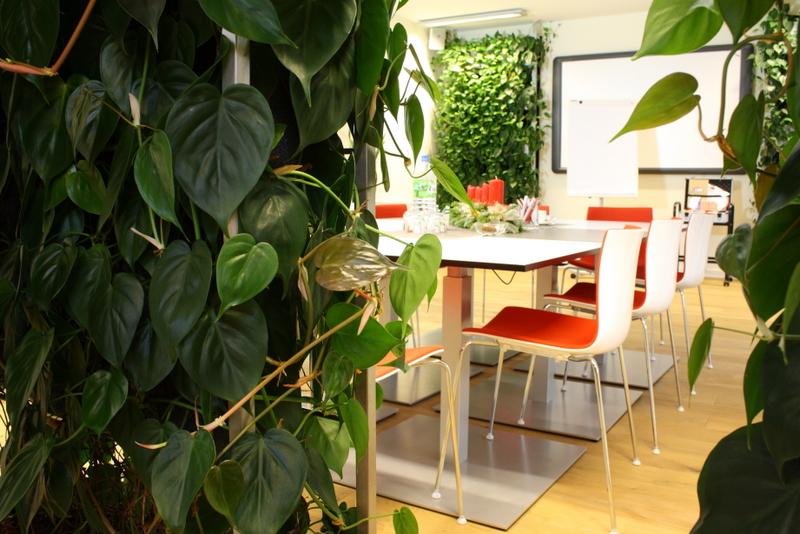 Philodendron scandens baumfreund - Vertikale wandbepflanzung ...