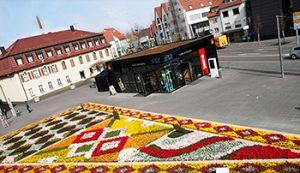 Blütenmeer auf dem Marktplatz
