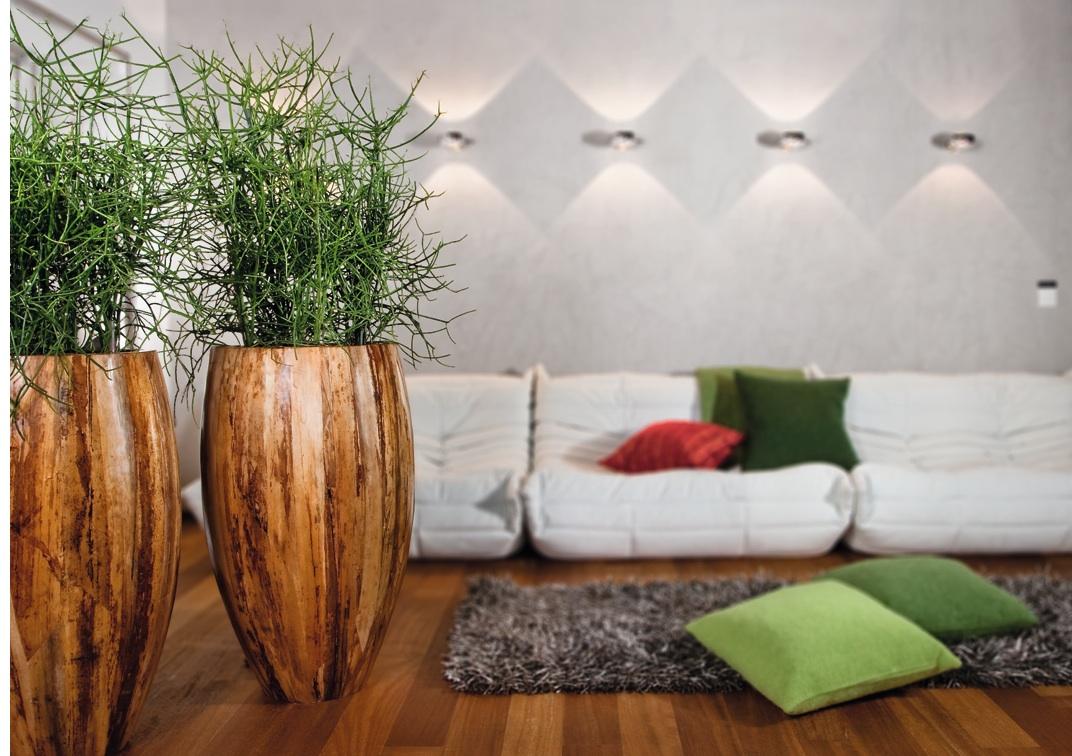Feng Shui mit Pflanzen für Esszimmer und Co