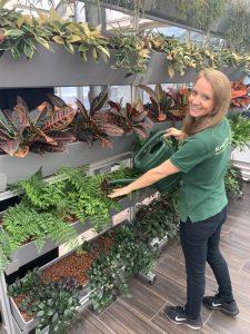 Frau gießt systemisches Mittel zum Pflanzenschutz ein