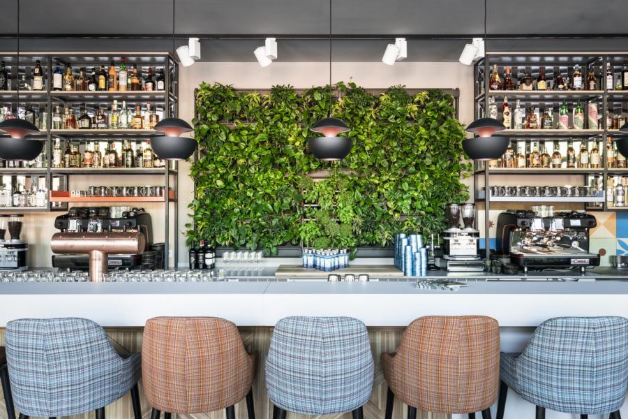Wir pflanzen die Urwälder neu – in Häusern und Büros (Foto: S. Böttcher)