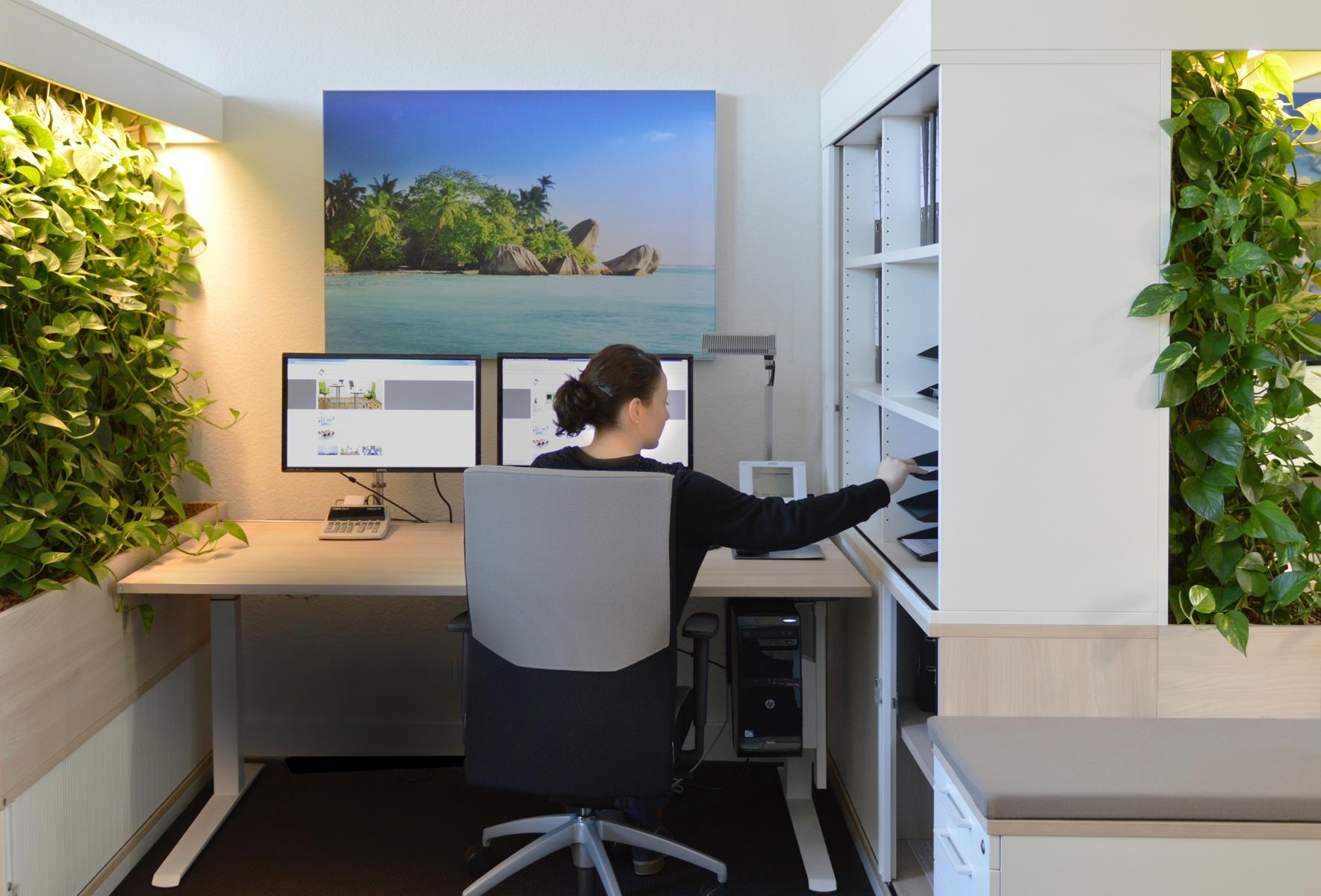 """Platzsparende grüne Innovation: """"Zwölf Mitarbeiter fühlen sich jetzt im Büro wohler als vorher acht"""""""