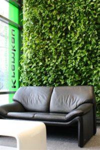 Grün auf engem Raum mit Vertikalbegrünungen