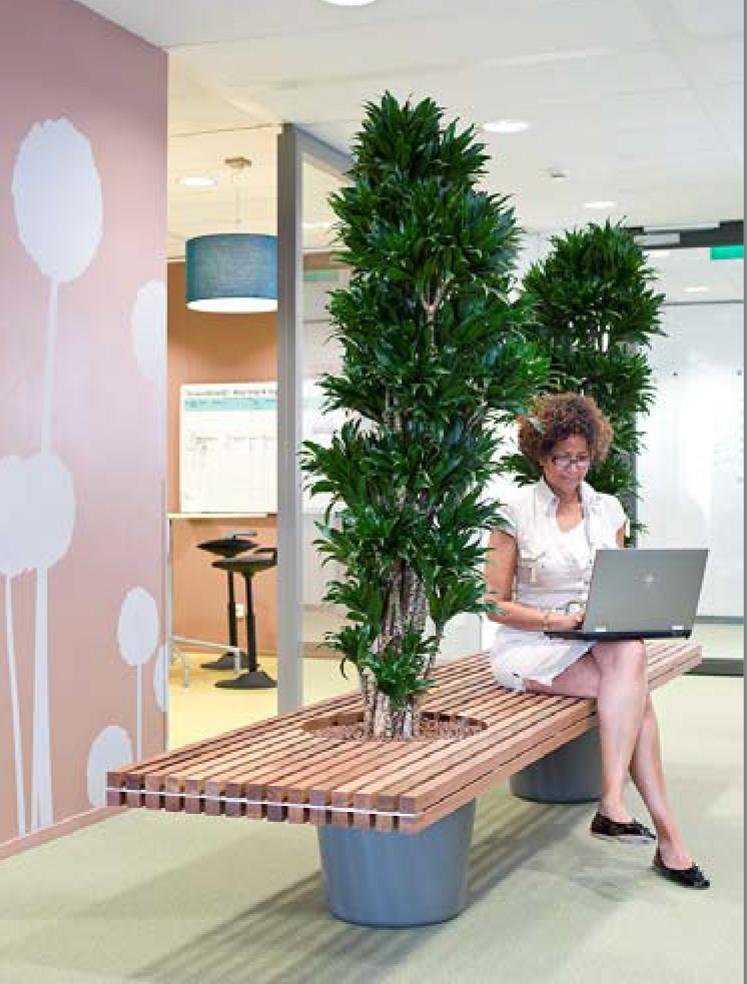 Frau mit Laptop arbeitet auf einer begrünten Bank