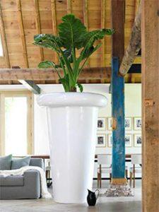 Dachgeschosswohnung mit riesigem weißem Pflanzgefäß
