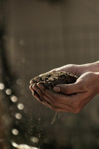 Zwei Hände halten Erde