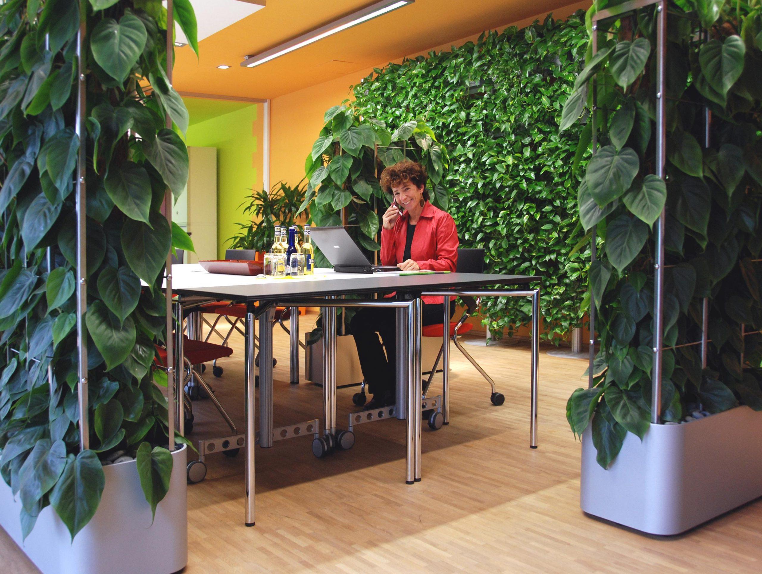 """""""Grüne Revolution"""" in deutschen Büros"""