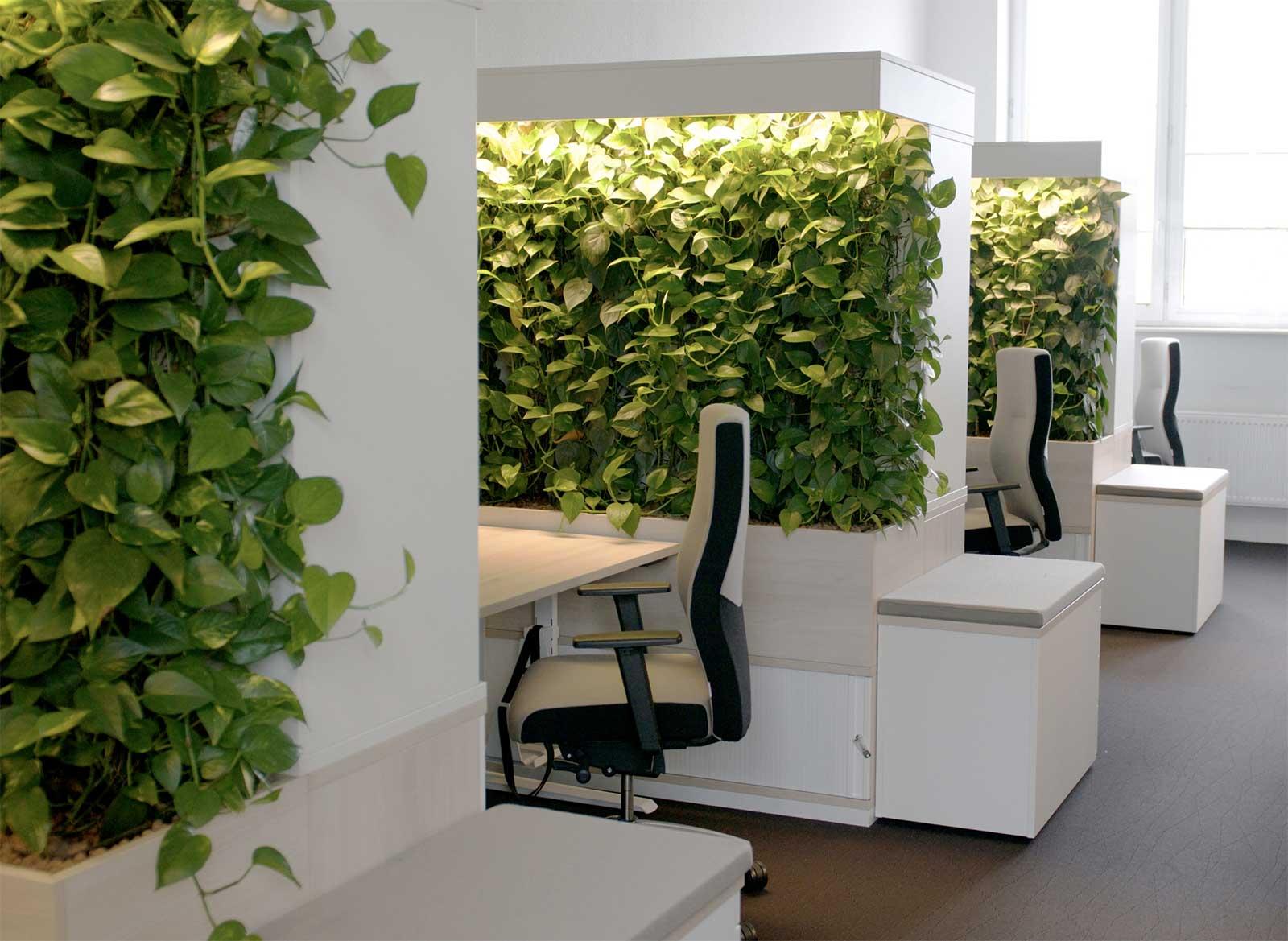 Mit Pflanzenwänden die Abstände doppelt gesund gestalten: 'social distancing' in Grün