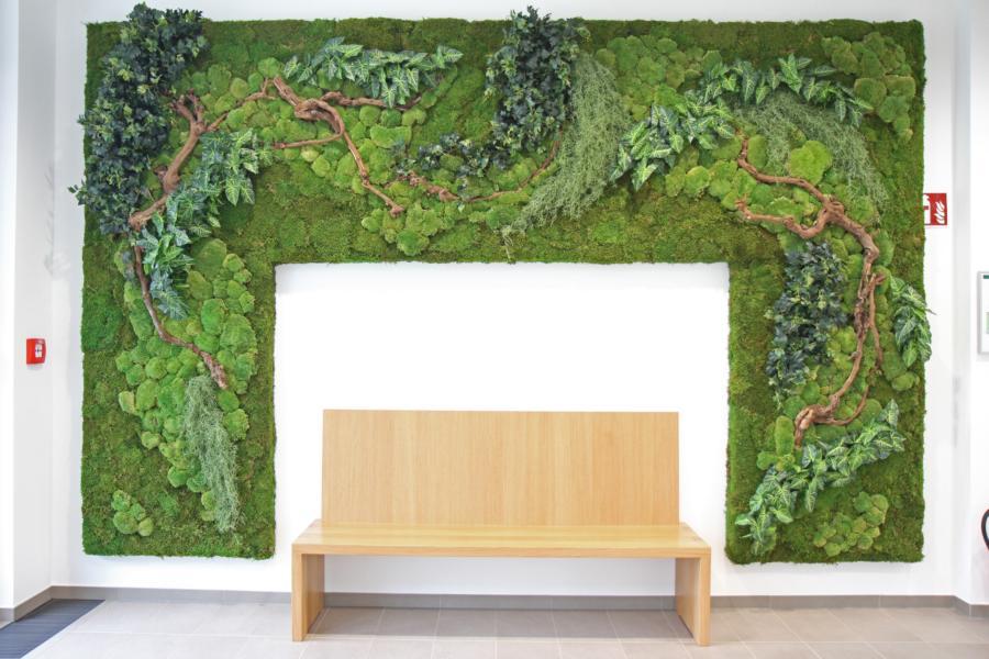 Ein grüner erster Eindruck – Pflanzenwand sorgt für stilvollen Empfang