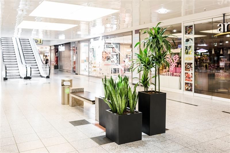 Leine Center Laatzen – Begrünung eines Einkaufzentrums