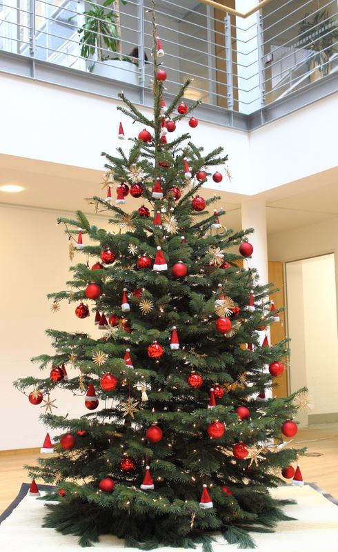 Weihnachtsbaum Rot.Unsere Weihnachtsbäume