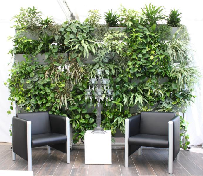 Pflanzenwand als Dschungel bepflanzt