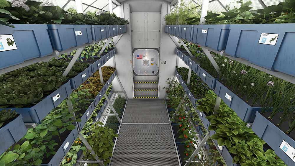 Galerie Indoor Gärten